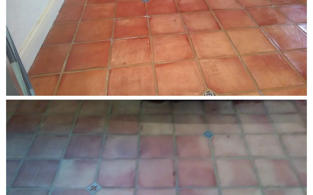 How to Clean and Seal Terracotta Tiles in Exmouth